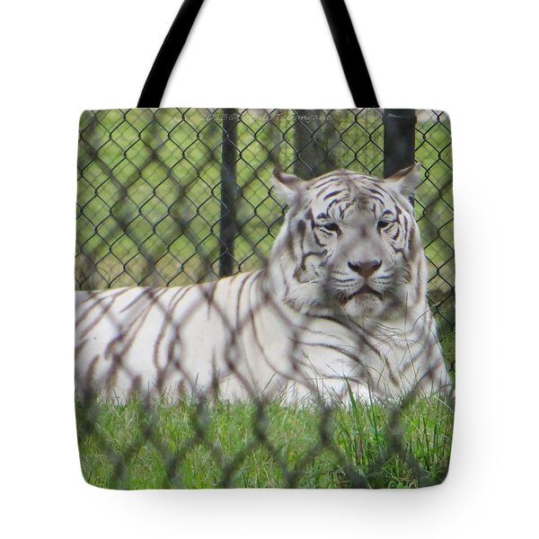 Bengal White Tiger Tote Bag by Sonali Gangane