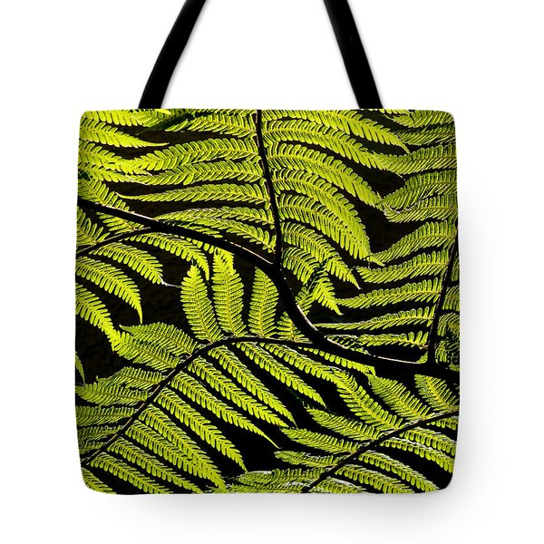 Bent Fern Tote Bag