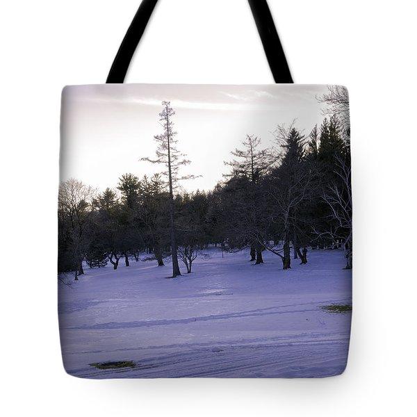 Berkshires Winter 5 - Massachusetts Tote Bag by Madeline Ellis