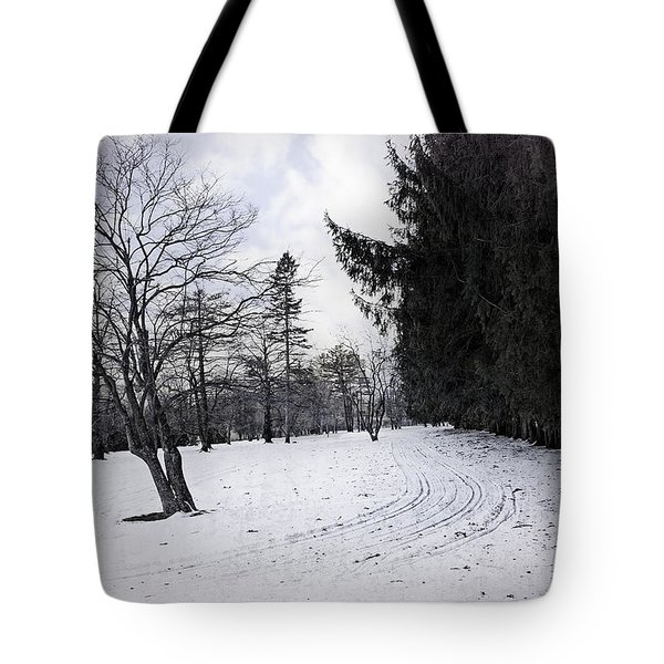 Berkshires Winter 9 - Massachusetts Tote Bag by Madeline Ellis