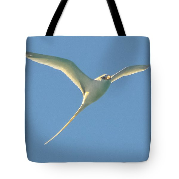 Bermuda Longtail In Flight Tote Bag by Jeff at JSJ Photography