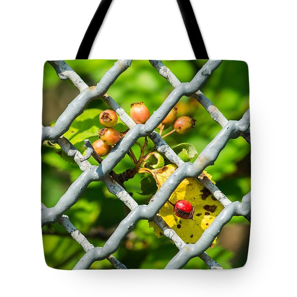 Berries And The City - Featured 3 Tote Bag by Alexander Senin