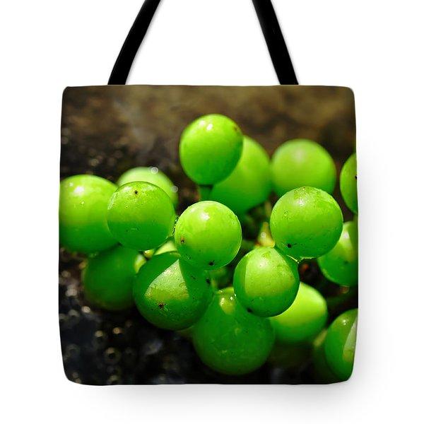 Berries On Water Tote Bag by Kaye Menner