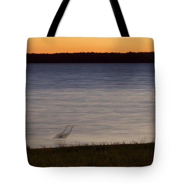 Beside Myself - Great Blue Heron At Sunset Tote Bag by Jane Eleanor Nicholas