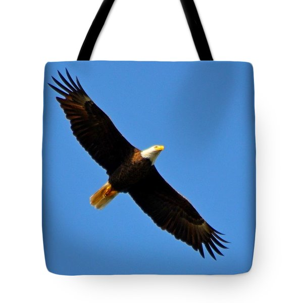 Best Bald Eagle On Blue Tote Bag by Jeff at JSJ Photography