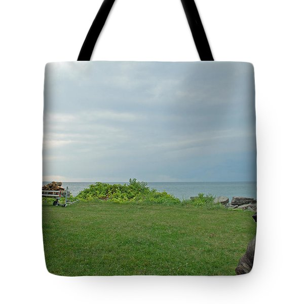 Best Friend Tote Bag by Aimee L Maher Photography and Art Visit ALMGallerydotcom