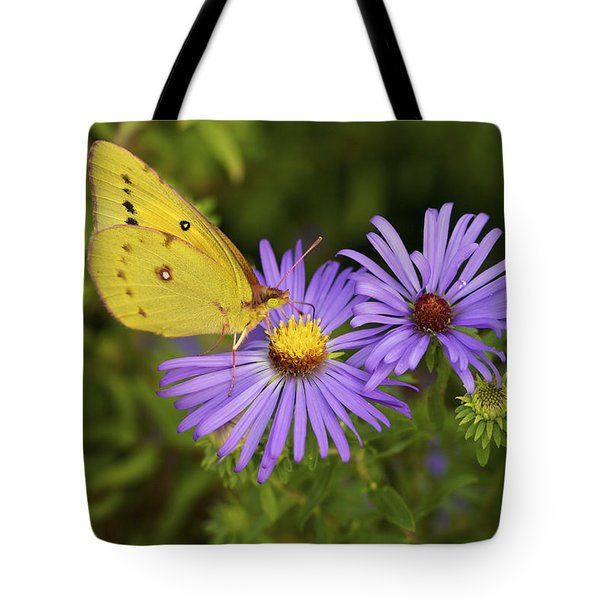 Tote Bag featuring the photograph Best Friends - Sulphur Butterfly On Asters by Jane Eleanor Nicholas