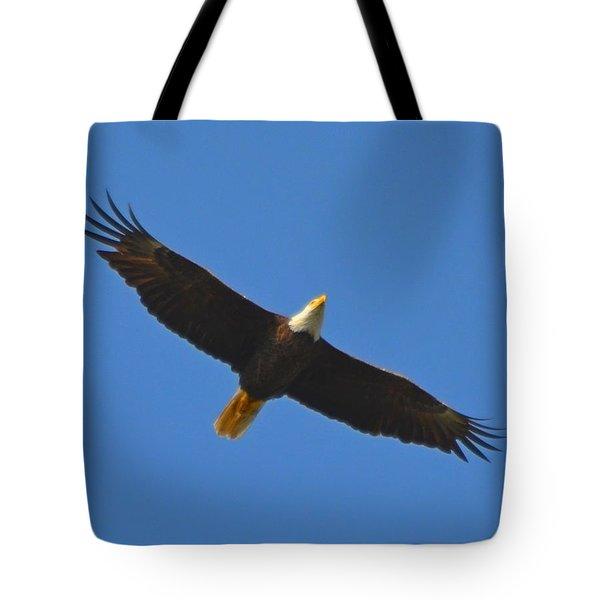 Best Soaring Bald Eagle Tote Bag by Jeff at JSJ Photography