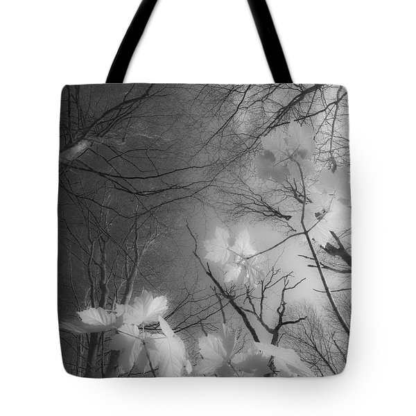 Between Black And White-02 Tote Bag