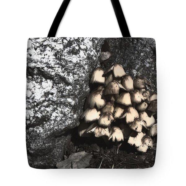 Between The Rocks Tote Bag