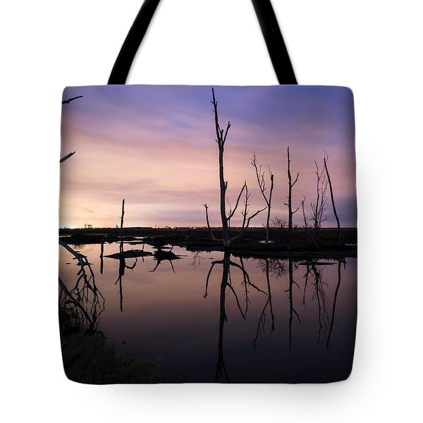 Between Two Worlds By Denise Dube Tote Bag