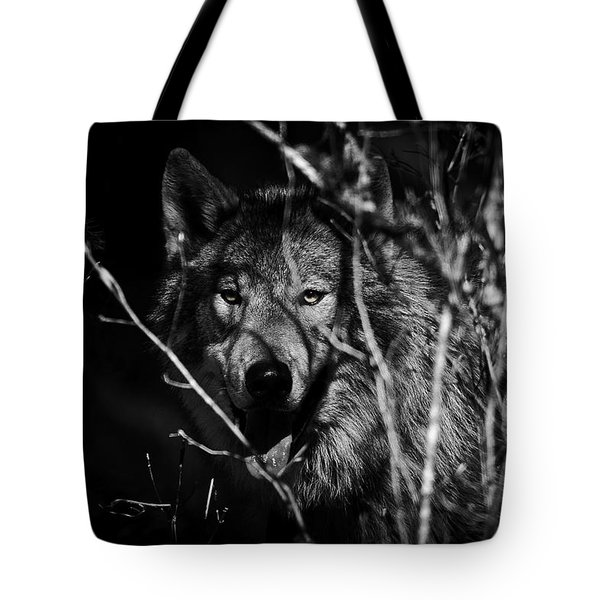 Beware The Woods Tote Bag by Wes and Dotty Weber
