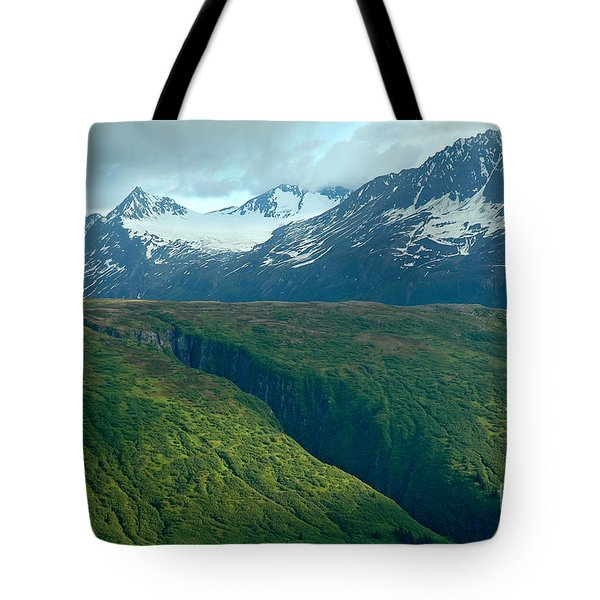 Beyond Description Tote Bag