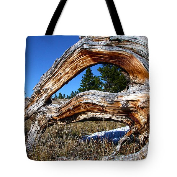 Beyond Our Roots Tote Bag