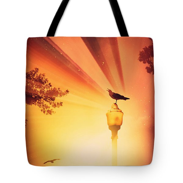 Beyond The Beyond Tote Bag by Aurelio Zucco