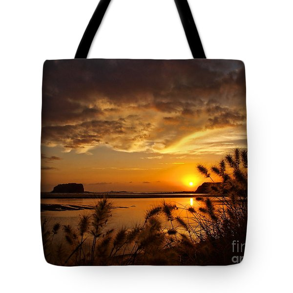Tote Bag featuring the photograph Beyond The Reeds by Trena Mara