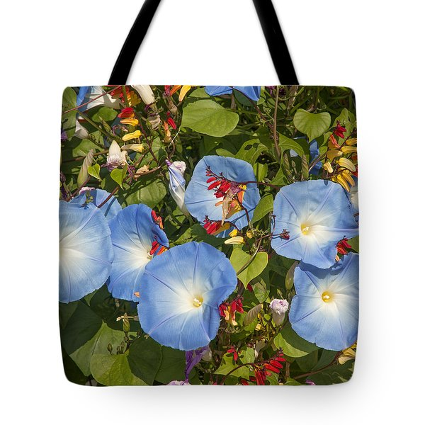 Bhubing Palace Gardens Morning Glory Dthcm0433 Tote Bag