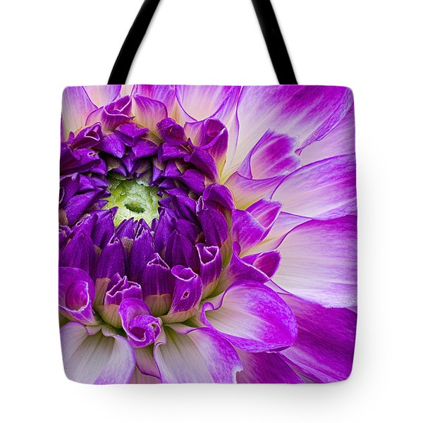 Bicolored Dahlia Tote Bag