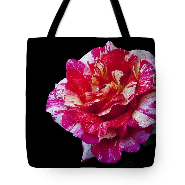 Tote Bag featuring the photograph Bicolour Beauty by Doug Norkum