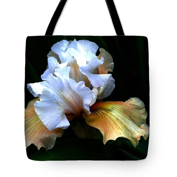 Bifocal Tote Bag by Doug Norkum
