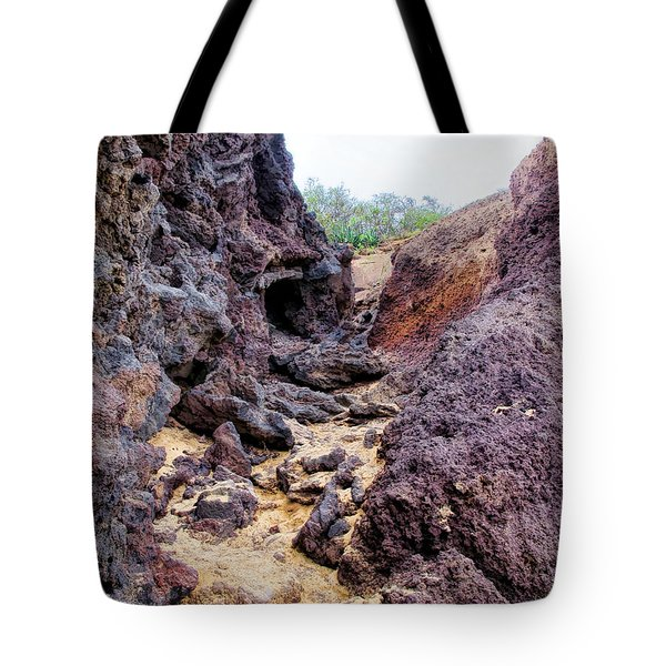 Big Beach 41 Tote Bag by Dawn Eshelman