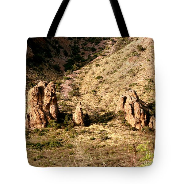 Big Bend Nativity Tote Bag by Linda Cox