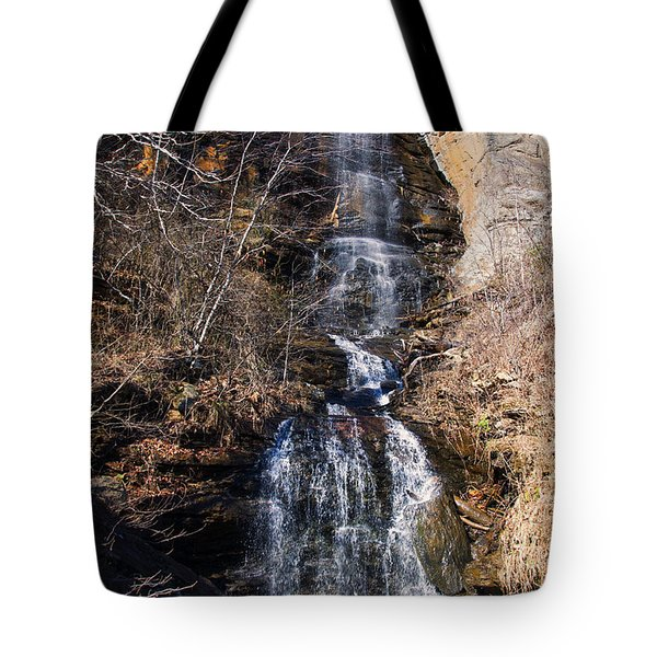 Big Bradley Falls 2 Tote Bag