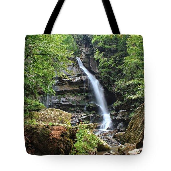 Big Bradley Falls Tote Bag