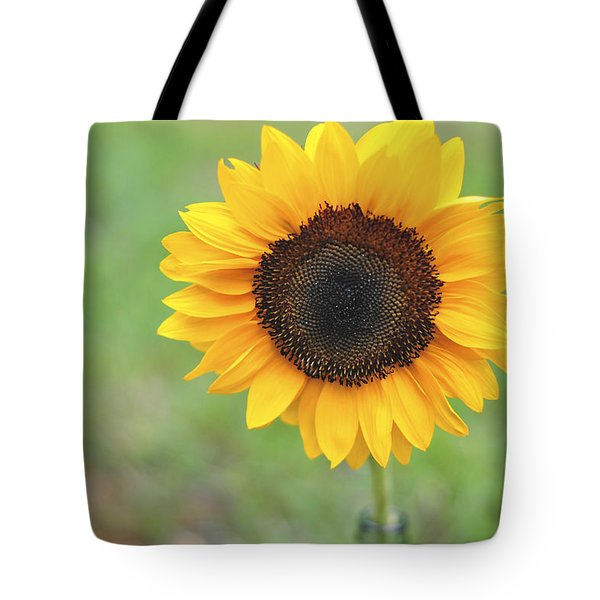 Big Bright Yellow Colorful Sunflower Art Print Tote Bag