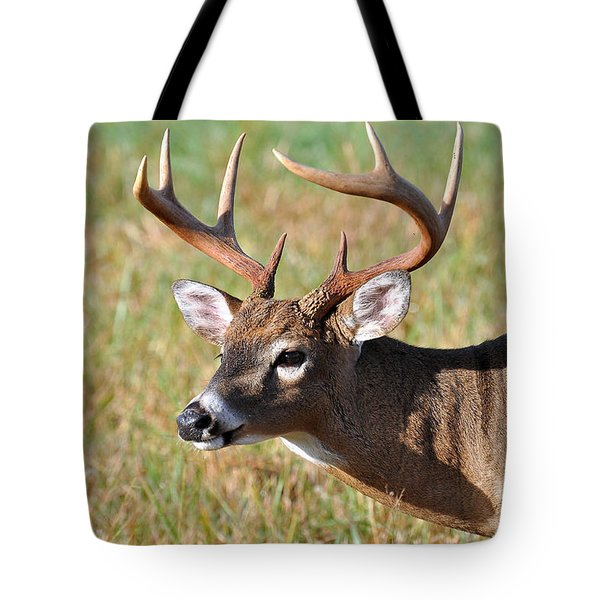 Big Buck Tote Bag by Todd Hostetter