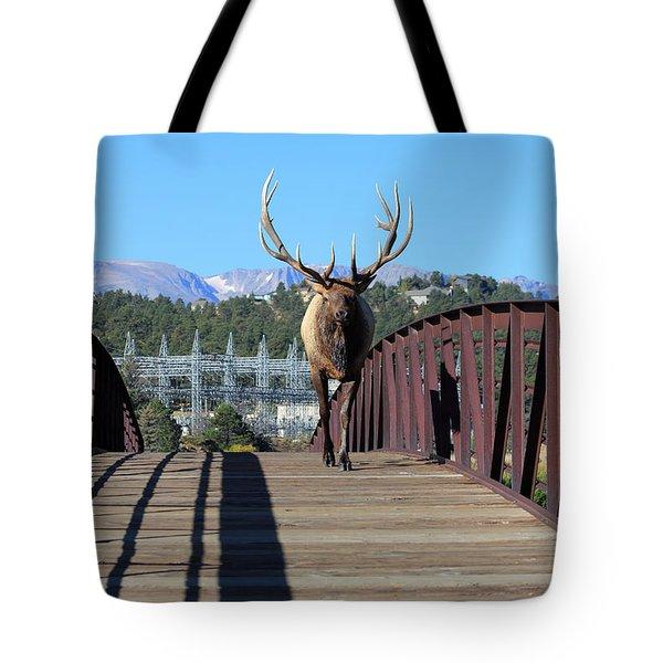 Big Bull On The Bridge Tote Bag