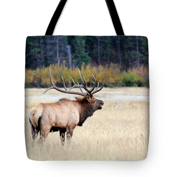 Big Colorado Bull Tote Bag