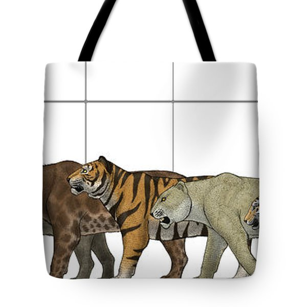 Big Felines Size Chart Tote Bag by Vitor Silva