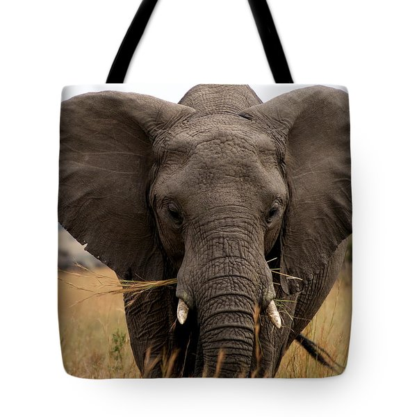 Big Gray Tote Bag