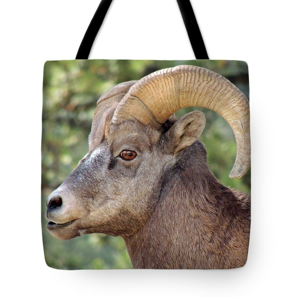 Tote Bag featuring the photograph Big Horn by Lynn Sprowl