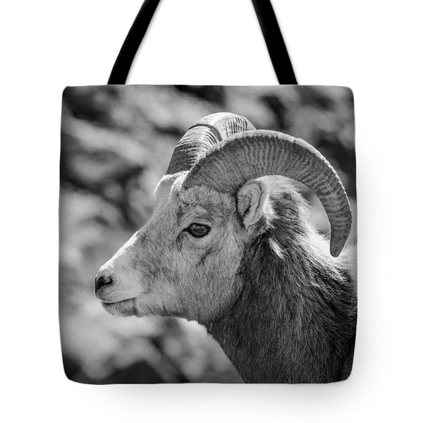 Big Horn Sheep Profile Tote Bag