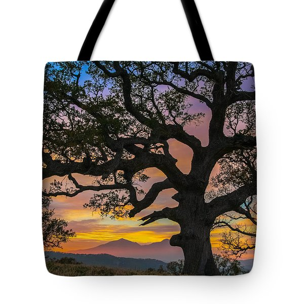 Big Oak Tote Bag by Marc Crumpler