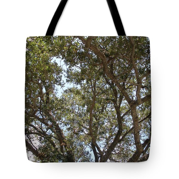 Big Oak Tree Tote Bag