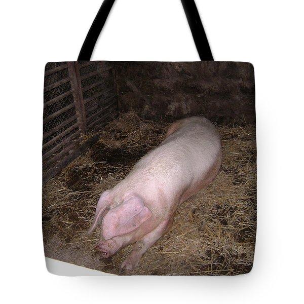 Big Pig Tote Bag