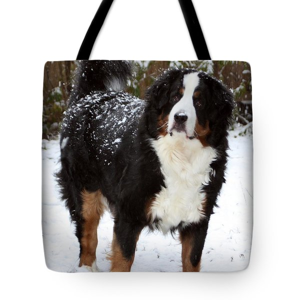 Snow Happy Tote Bag by Patti Whitten