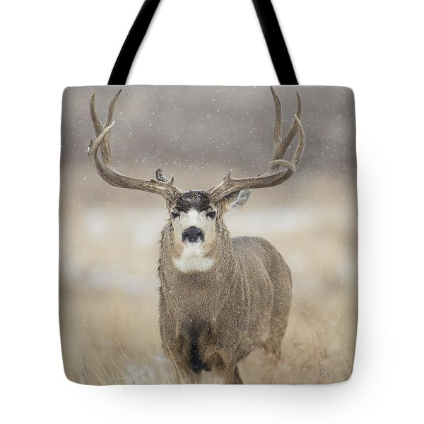 Big Sky On Snowy Day Tote Bag