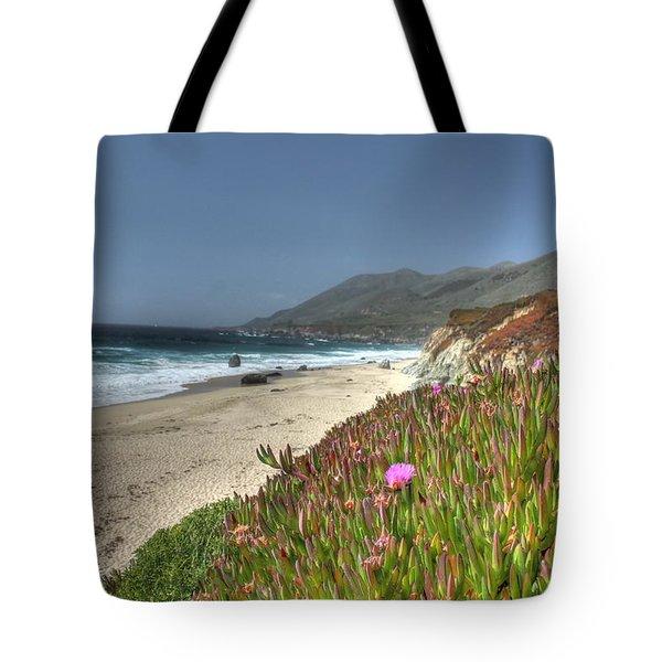Big Sur Beach Tote Bag by Jane Linders