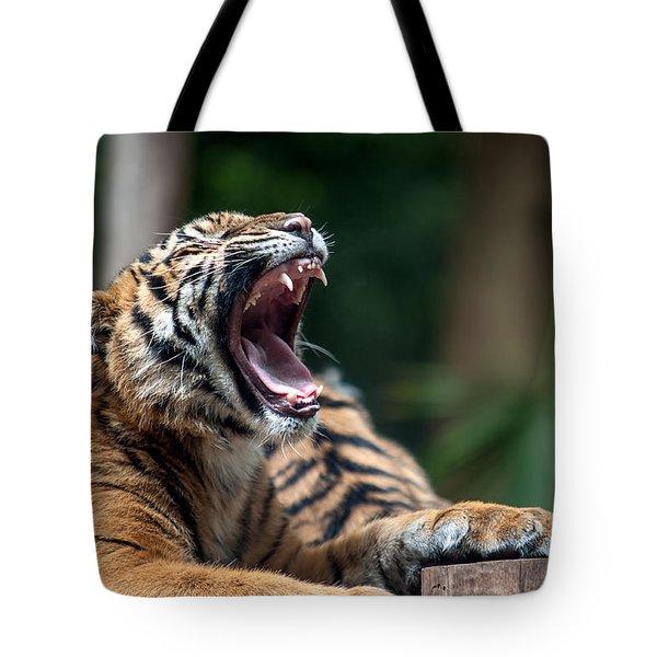 Big Yawn Tote Bag by Ray Warren