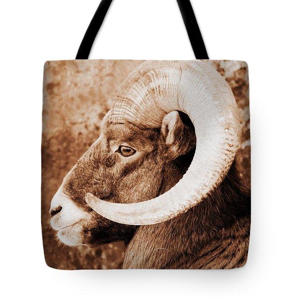 Bighorn Sheep Profile Tote Bag by Ramona Johnston