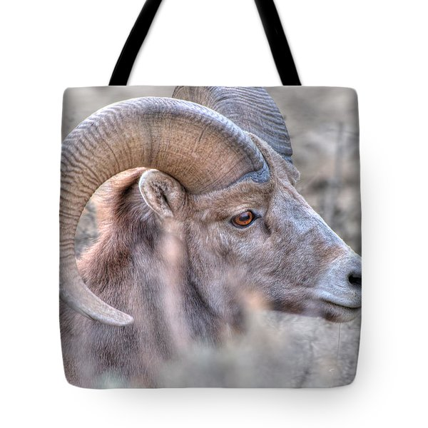 Bighorn Soft Tote Bag by Britt Runyon