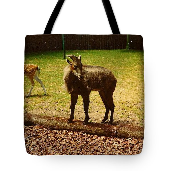 Billy Goat Keeping Lookout Tote Bag by Amazing Photographs AKA Christian Wilson