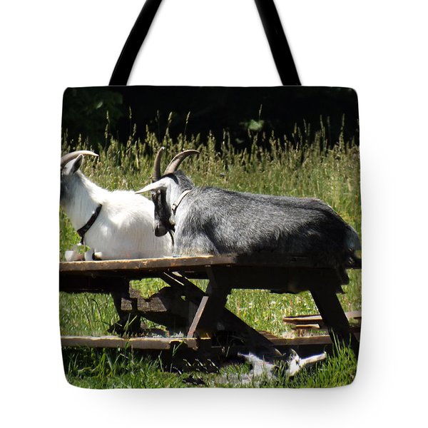 Billy Goats Picnic Tote Bag