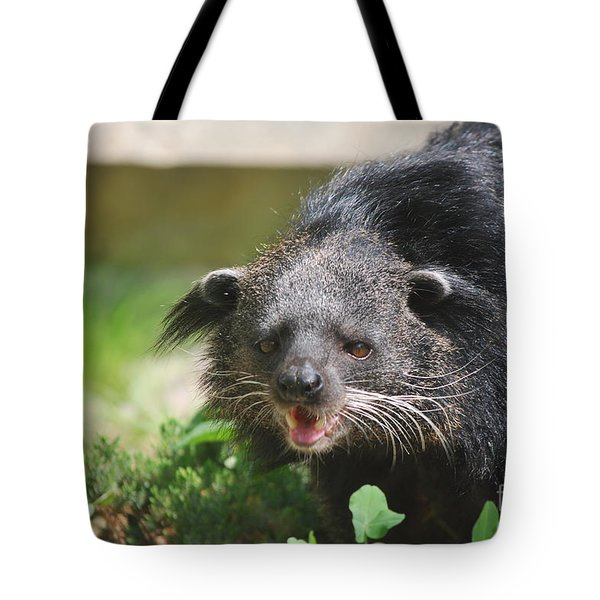 Binturong Tote Bag by DejaVu Designs