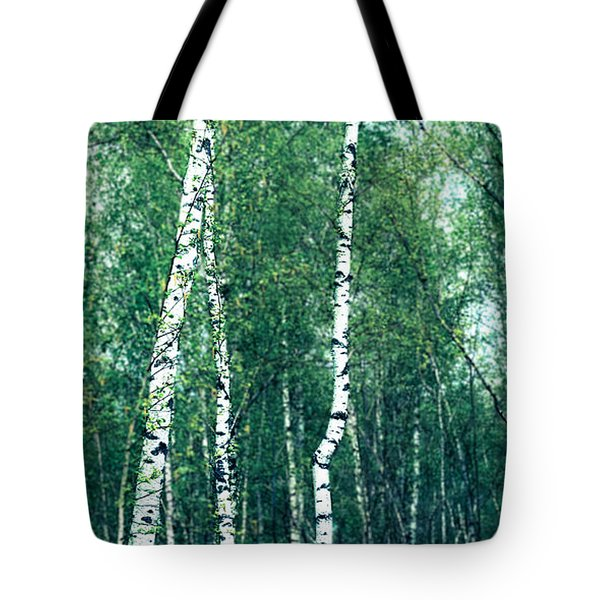 Birch Forest - Green Tote Bag by Hannes Cmarits
