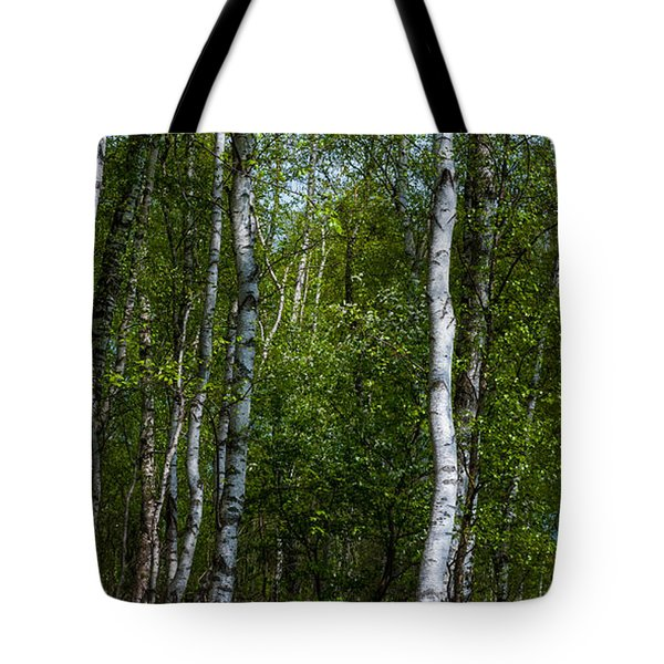 Birch Forest In The Summer Tote Bag by Hannes Cmarits